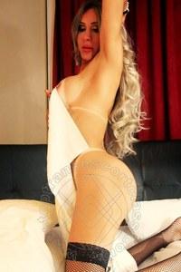 Trans EscortSheila Rodrigues