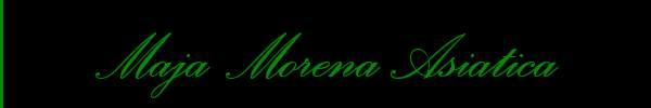 Maja Morena Asiatica  Trento Trans 3270052947 Sito Personale Class