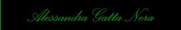 3488811524 Vieni a vedere le foto del sito personale di Alessandra Gatta Nera su toptransclass.it