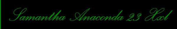 3335695336 Vieni a vedere le foto del sito personale di Sasha Anaconda 23 Motivi su toptransclass.it