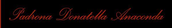 0041766337107 Vieni a vedere le foto del sito personale di Padrona Donatella Anaconda su topmistresstravclass.it