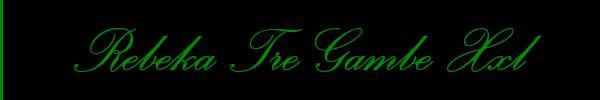 3509343345 Vieni a vedere le foto del sito personale di Rebeka Tre Gambe Xxl su toptransclass.it