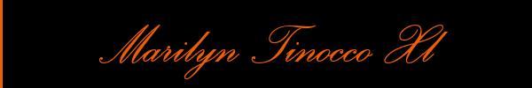 3206844651 Vieni a vedere le foto del sito personale di Marilyn Tinocco Xl su toptravclass.it