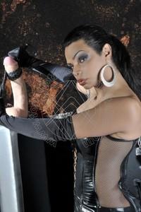 Mistress TransMadame Fox