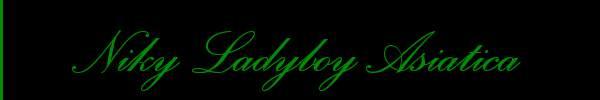 Niky Ladyboy Asiatica  Trento Trans 3510985984 Sito Personale Class