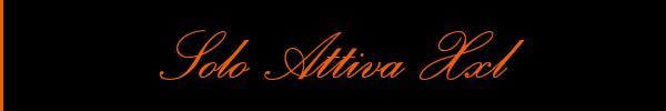 Solo Attiva Xxl Firenze Trav 3453539696 Sito Personale Siti