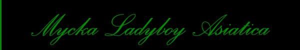 Foto del sito personale di Mycka Ladyboy Asiatica Trans Roma